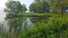 Πολύβλαστο πράσινο πάρκο στη Βόρεια Αμερική στοκ εικόνες με δικαίωμα ελεύθερης χρήσης