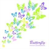 Πολύχρωμες πεταλούδες που απομονώνονται σε ένα άσπρο υπόβαθρο Στοκ Φωτογραφίες
