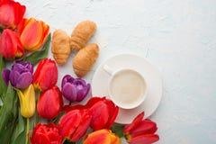 Πολύχρωμες τουλίπες με τον καφέ και croissants το ελαφρύ υπόβαθρο, τοπ άποψη, με το κενό διάστημα για το γράψιμο ή τη διαφήμιση στοκ εικόνες