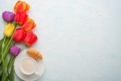 Πολύχρωμες τουλίπες με τον καφέ και croissants το ελαφρύ υπόβαθρο, τοπ άποψη, με το κενό διάστημα για το γράψιμο ή τη διαφήμιση στοκ φωτογραφία