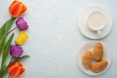 Πολύχρωμες τουλίπες με τον καφέ και croissants το ελαφρύ υπόβαθρο, τοπ άποψη, με το κενό διάστημα για το γράψιμο ή τη διαφήμιση στοκ φωτογραφίες