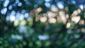 Πολύχρωμο υπόβαθρο που αποτελείται από τα πράσινων, χρυσών και άλλου χρώματα μπλε, Στοκ εικόνα με δικαίωμα ελεύθερης χρήσης