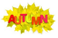Πολύχρωμο φθινόπωρο επιγραφής σε ένα υπόβαθρο των φύλλων φθινοπώρου σε ένα άσπρο υπόβαθρο απομονωμένος στοκ φωτογραφίες