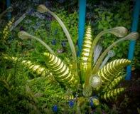 Πολύ ενδιαφέρων κήπος με το γυαλί και τις ζωντανές εγκαταστάσεις στοκ φωτογραφία με δικαίωμα ελεύθερης χρήσης