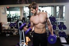 Πολύ ο αθλητικός τύπος δύναμης, εκτελεί την άσκηση με τους αλτήρες, στην αίθουσα γυμναστικής Στοκ Εικόνα