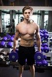 Πολύ ο αθλητικός τύπος δύναμης, εκτελεί την άσκηση με τους αλτήρες, στην αίθουσα γυμναστικής Στοκ εικόνα με δικαίωμα ελεύθερης χρήσης