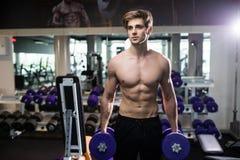 Πολύ ο αθλητικός τύπος δύναμης, εκτελεί την άσκηση με τους αλτήρες, στην αίθουσα γυμναστικής Στοκ φωτογραφία με δικαίωμα ελεύθερης χρήσης