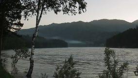 Πολύ όμορφη φύση Altai απόθεμα βίντεο