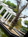 Πολύ όμορφο κτήριο στη Σρι Λάνκα στοκ εικόνες
