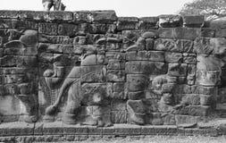 Πομπή των ελεφάντων Στοκ Φωτογραφίες