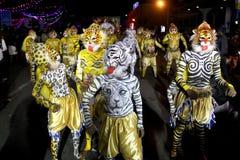 Πομπή χορού τιγρών Στοκ Φωτογραφίες