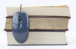 Ποντίκι και βιβλία Στοκ εικόνες με δικαίωμα ελεύθερης χρήσης
