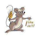 Ποντίκι και σίτος Στοκ Εικόνες