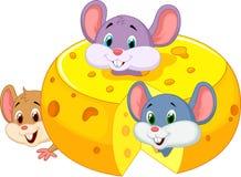 Ποντίκι κινούμενων σχεδίων που κρύβει το εσωτερικό τυρί τυριού Cheddar Στοκ Εικόνες