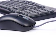 ποντίκι πληκτρολογίων Στοκ εικόνα με δικαίωμα ελεύθερης χρήσης