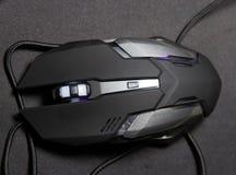 Ποντίκι υπολογιστών τυχερού παιχνιδιού Στοκ Εικόνες