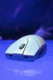 ποντίκι Στοκ φωτογραφία με δικαίωμα ελεύθερης χρήσης