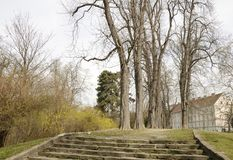 Πορεία κήπων μεταξύ των δέντρων Στοκ Φωτογραφίες