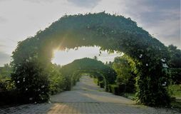 Πορεία κήπων που βάζουν σε στρώσεις με τα archs φιαγμένα από εγκαταστάσεις και λουλούδια Στοκ Φωτογραφίες