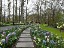 Πορεία κήπων των λουλουδιών άνοιξη στοκ εικόνες