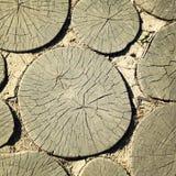 Πορεία κήπων φιαγμένη από ξύλινα κούτσουρα ηλικίας φωτογραφία Στοκ Φωτογραφία
