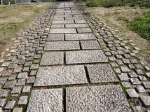 Πορεία κοντά στο μουσείο 049 liangzhu στοκ εικόνες