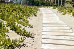 Πορεία μέσω της άμμου στοκ εικόνα