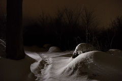 Πορεία μέσω της χιονώδους σκηνής Στοκ εικόνα με δικαίωμα ελεύθερης χρήσης