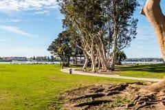 Πορεία μέσω του Βορρά πάρκων μαρινών Embarcadero, με τον κόλπο του Σαν Ντιέγκο στοκ εικόνα
