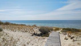 Πορεία μέσω των αμμόλοφων άμμου στη θάλασσα της Βαλτικής στοκ εικόνες