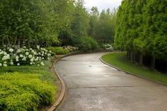 Πορεία μετά από τη βροχή στοκ εικόνες
