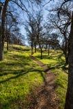 Πορεία πεζοπορίας επάνω ένας λόφος την πρώιμη άνοιξη στοκ φωτογραφία