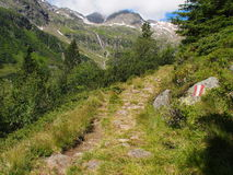 Πορεία πεζοπορίας στα βουνά, νότιο Τύρολο, Ιταλία Ευρώπη Στοκ Εικόνες
