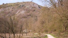 Πορεία που οδηγεί στο βουνό που εισβάλλεται με τα δέντρα σε ένα υπόβαθρο μπλε ουρανού απόθεμα βίντεο