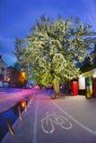 Πορεία ποδηλάτων ανθών της Apple Στοκ φωτογραφία με δικαίωμα ελεύθερης χρήσης