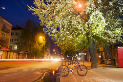 Πορεία ποδηλάτων ανθών της Apple Στοκ Εικόνες