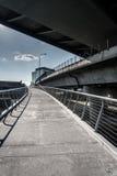 Πορεία ποδηλάτων κάτω από τη γέφυρα Zakim στη Βοστώνη, Μασαχουσέτη Στοκ Εικόνα