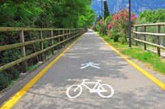 Πορεία ποδηλάτων στο πάρκο στοκ εικόνες