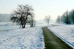 Πορεία ποδηλάτων το χειμώνα Στοκ Φωτογραφία
