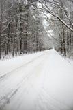 Πορεία στα ξύλα το χειμώνα Στοκ Φωτογραφία