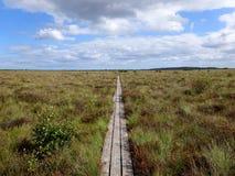 Πορεία στην αγριότητα Στοκ Φωτογραφία