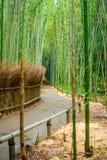 Πορεία στο δάσος μπαμπού, Arashiyama, Κιότο, Ιαπωνία Στοκ Εικόνες