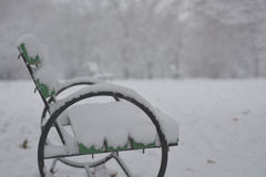 Πορεία στο πάρκο με το χιόνι Στοκ Εικόνες