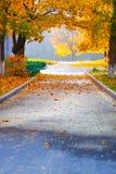 Πορεία στο πάρκο φθινοπώρου, πτώση του φύλλου Στοκ Φωτογραφία