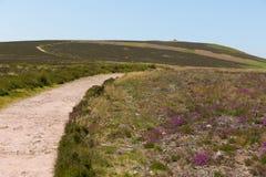 Πορεία στο Hill Dunkery το υψηλότερο σημείο σε Exmoor πλησίον στην κεφαλή νάρκης Somerset Αγγλία UK το καλοκαίρι Στοκ φωτογραφία με δικαίωμα ελεύθερης χρήσης