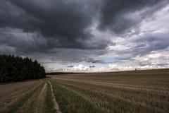 Πορεία τομέων που οδηγεί σε ένα δάσος κάτω από τα σκοτεινά σύννεφα Στοκ εικόνα με δικαίωμα ελεύθερης χρήσης