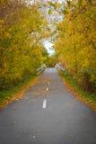Πορεία το πρόωρο φθινόπωρο σε Fredericton, Νιού Μπρούνγουικ Στοκ φωτογραφία με δικαίωμα ελεύθερης χρήσης
