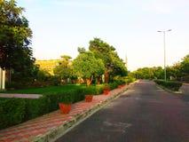 Πορεία φωτογραφιών ηλιοβασιλέματος στο πάρκο στοκ εικόνα