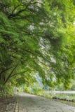 Πορεία φύσης κατά μήκος του ποταμού Oi σε Arashiyama, Κιότο, Ιαπωνία Στοκ εικόνες με δικαίωμα ελεύθερης χρήσης