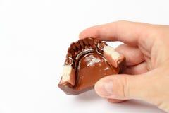 πορσελάνη χεριών κορωνών γ& στοκ φωτογραφίες με δικαίωμα ελεύθερης χρήσης